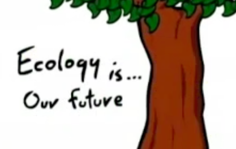 Ecology is our future.