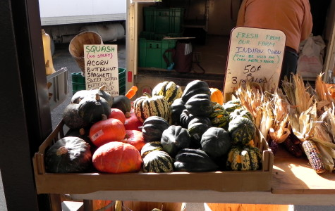 Acorn squash, a popular fall vegetable, displayed at the J and T Todosciuk Farms stall at the Ann Arbor Farmers Market.