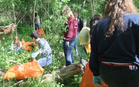 Community Students Uproot Nearly  Four Tons of Invasive Species at Annual Garlic Mustard Pull
