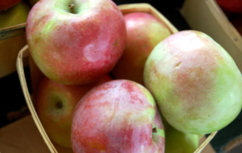 How Do You Like Them Apples? Fruit Crops In The Great Lakes Region Decimated