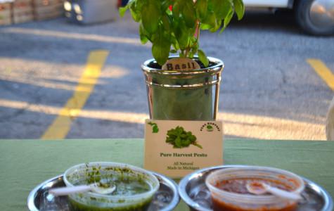 Pesto Paul