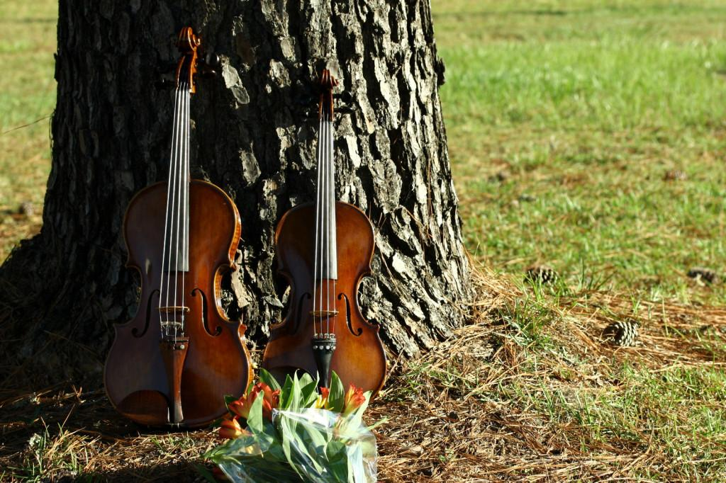 An Instrumental Hobby