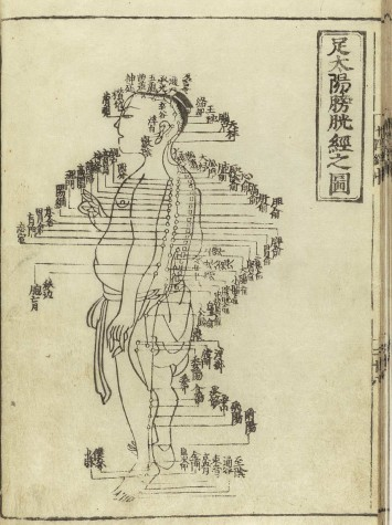 The Medicinal Uses of Acupuncture