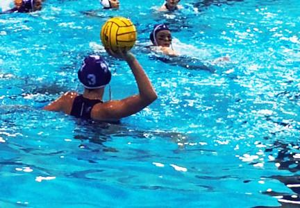 Sudden Death for Pioneer and Okemos