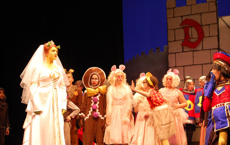 Shrek the Musical – Photo Story