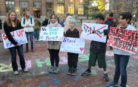 BAMN November 15th Protest