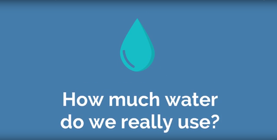 How+Much+Water+Do+We+Really+Use%3F