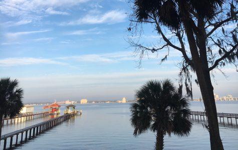 Calm in Jacksonville