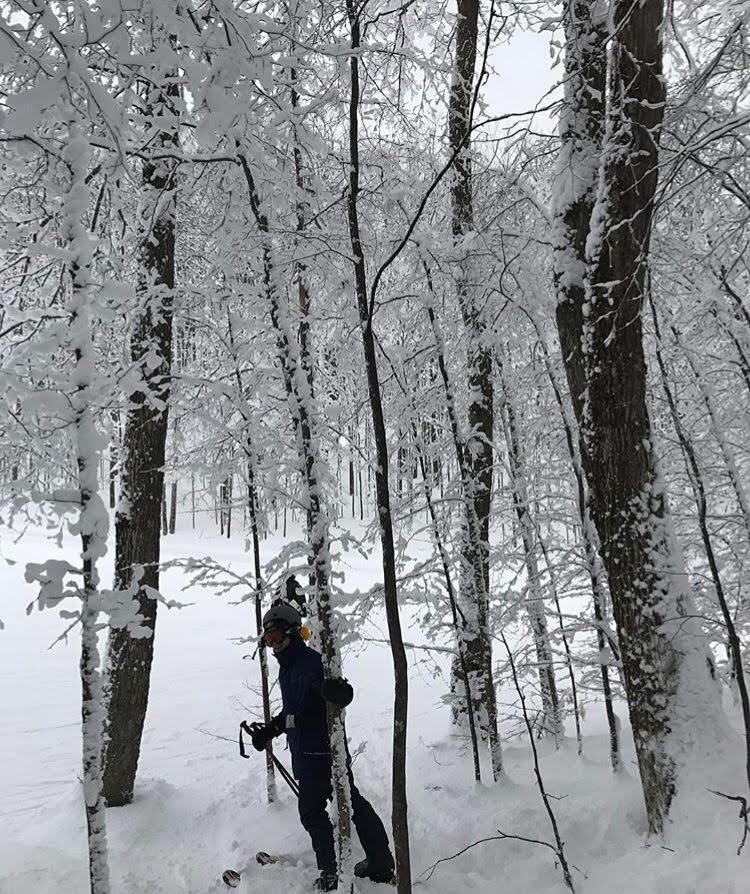 A skier stops to pose as he skis through trees at Nubs Nob, a ski resort near Harbor Springs.
