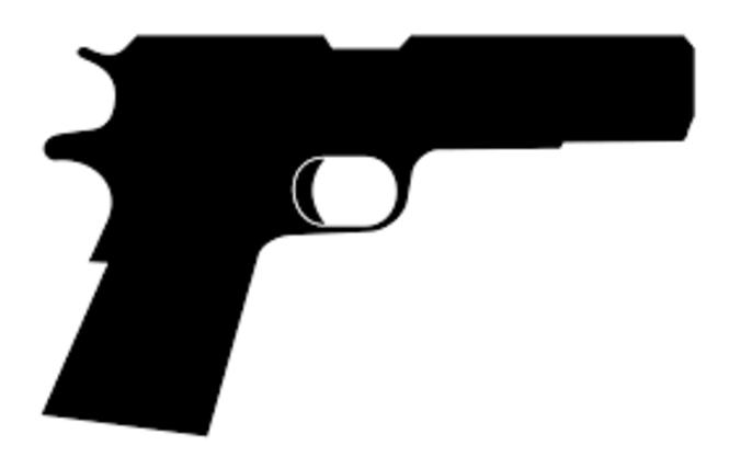 196 School Shootings Since 2013