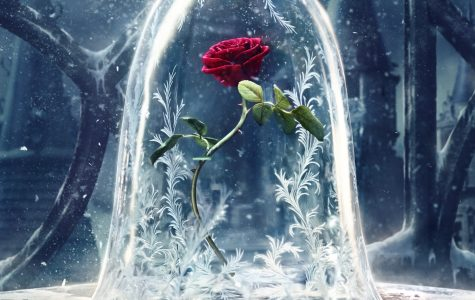 Although beautiful, this isn't your ordinary garden flower: this cursed rose is incredibly important in the film.
