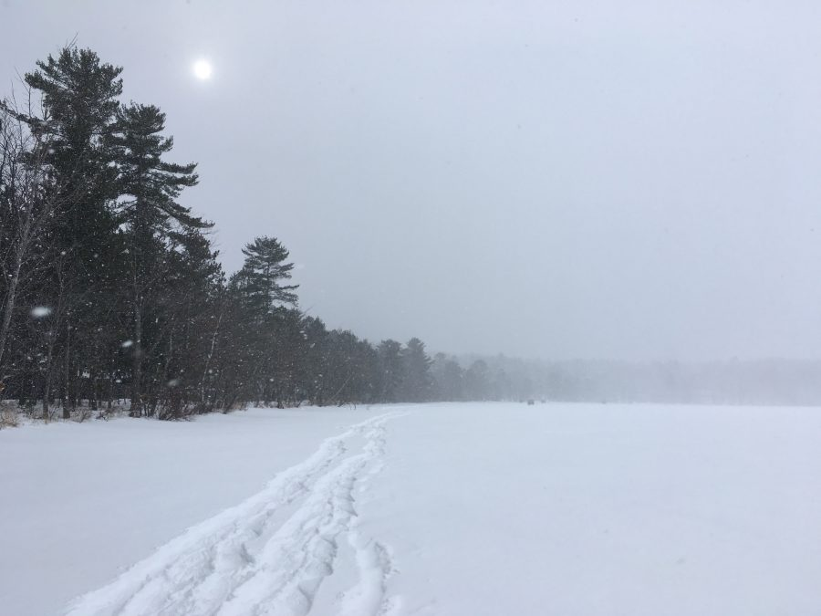 Snow falls heavily as wind blows, causing visibility for snowshoers out on Douglas Lake to worsen, later resulting in a white-out.