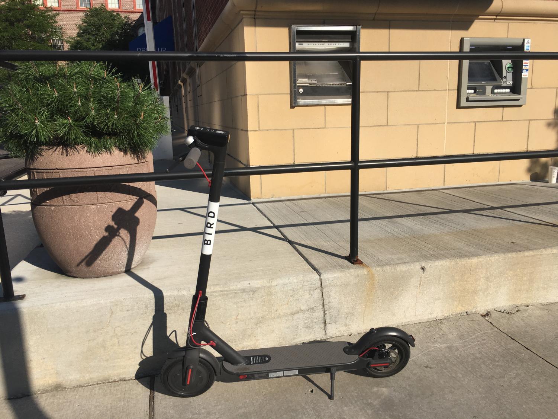 A bird scooter sits on an Ann Arbor sidewalk awaiting its next rider.