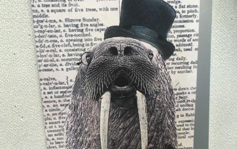 Matt is the walrus