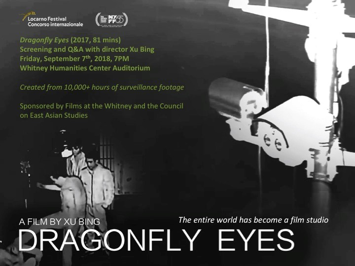 Xu Bings Dragonfly Eyes: a study of fiction and reality