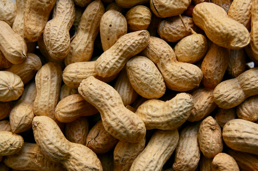 No, not just nuts