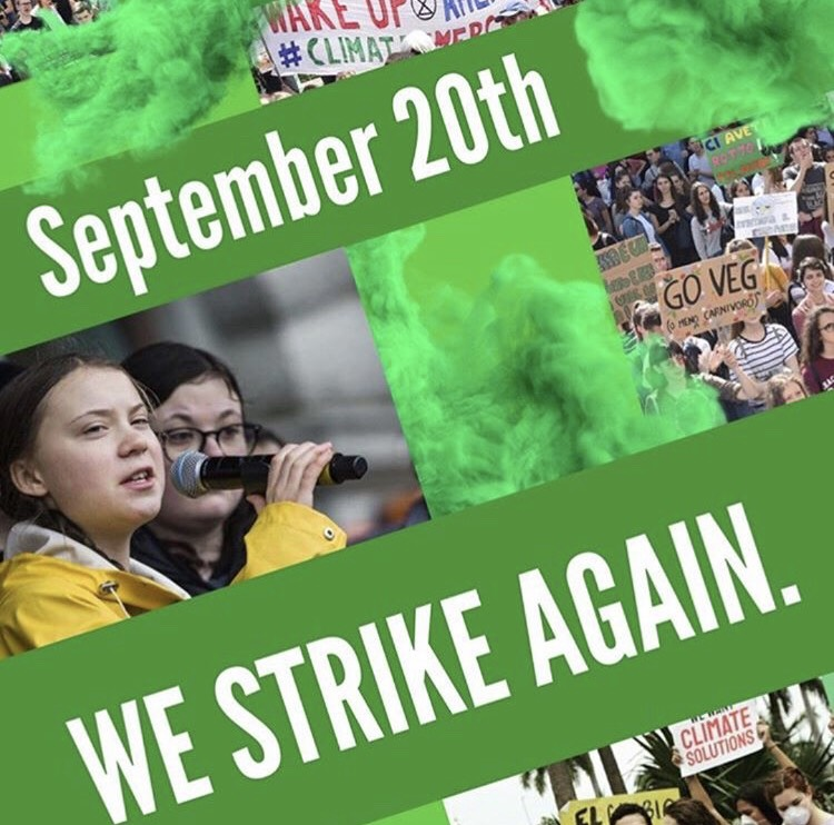 Global+Climate+Strike+comes+to+CHS