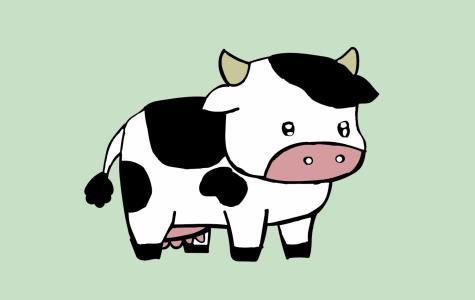 Is a steak a cow?