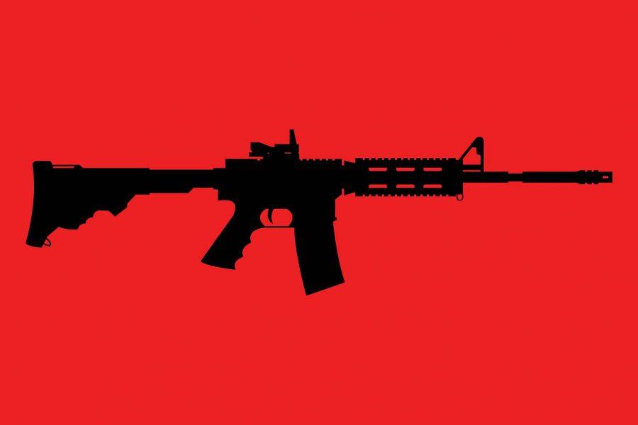Rifles+and+responsibilities%3A+Gun+ownership+in+Ann+Arbor